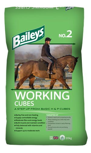 Baileys No 2 Working Cubes 20kg